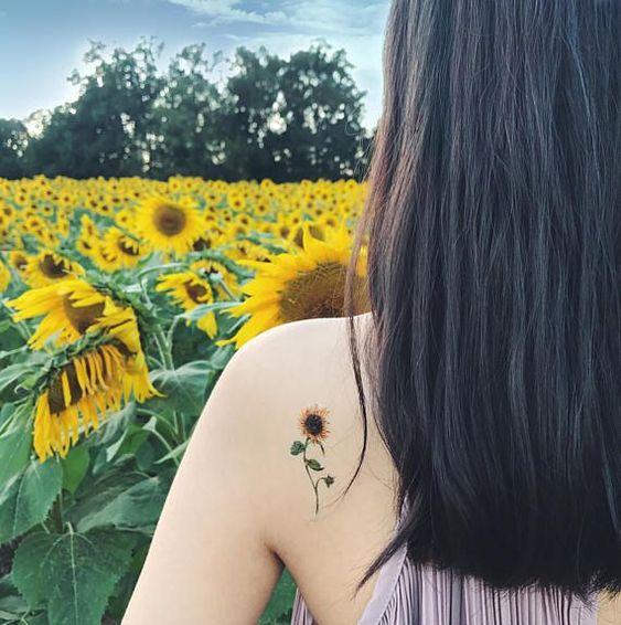 hoa hướng dương luôn được các cô nàng dịu dàng yêu thích.