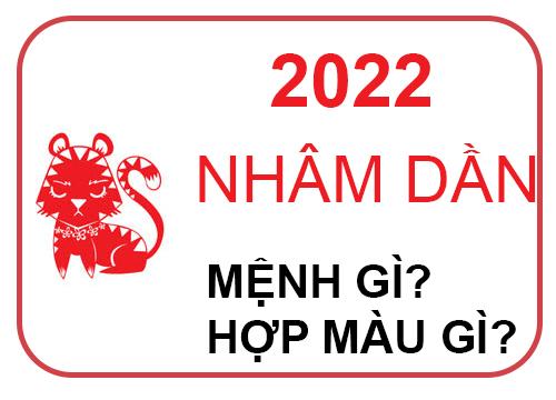 Sinh năm 2022 mệnh gì