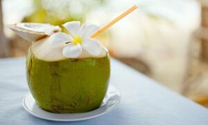 [Giải Đáp] Trứng và nước dừa có tốt cho bệnh gan?