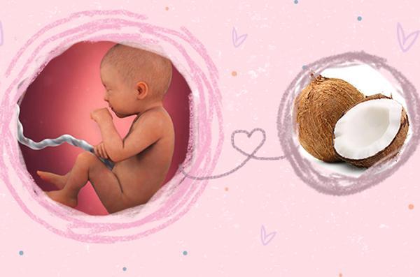 Sự phát triển của thai nhi 31 tuần tuổi